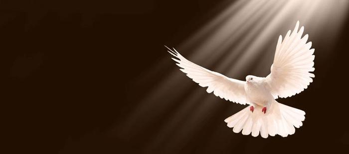 la llenura del espiritu santo estudio biblico pdf